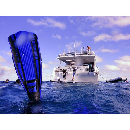 Pro dive cairns recreational divers scuba cnr - Pro dive cairns ...
