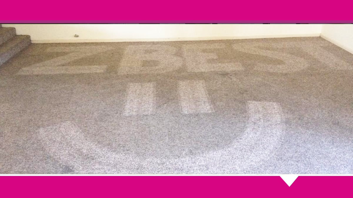 Z best carpet care carpet cleaning protection 48 lamilla st z best carpet care carpet cleaning protection 48 lamilla st glenfield park solutioingenieria Choice Image