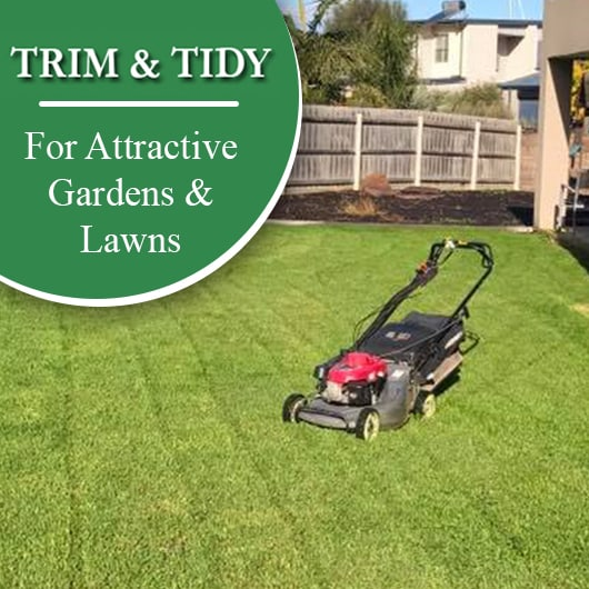trim tidy home garden maintenance promotion - Garden Mainenance