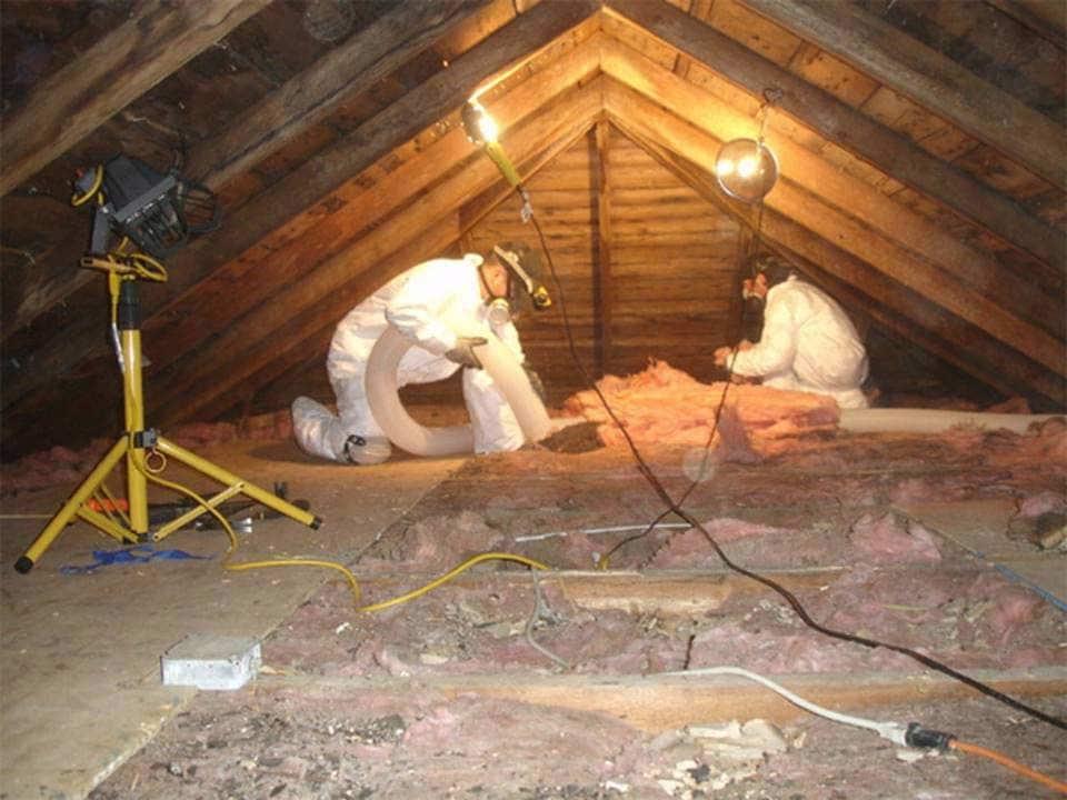 Roof Suckers Insulation Installers Amp Contractors Hendra