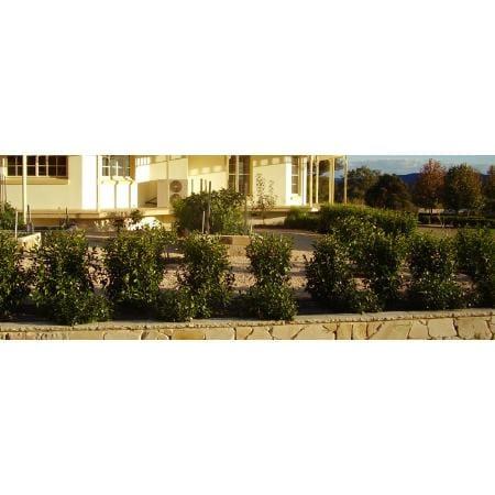 Elegant landscaping design gardeners 24 apollo dr for Elegant landscaping
