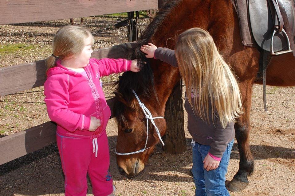 Bendigo horse riding
