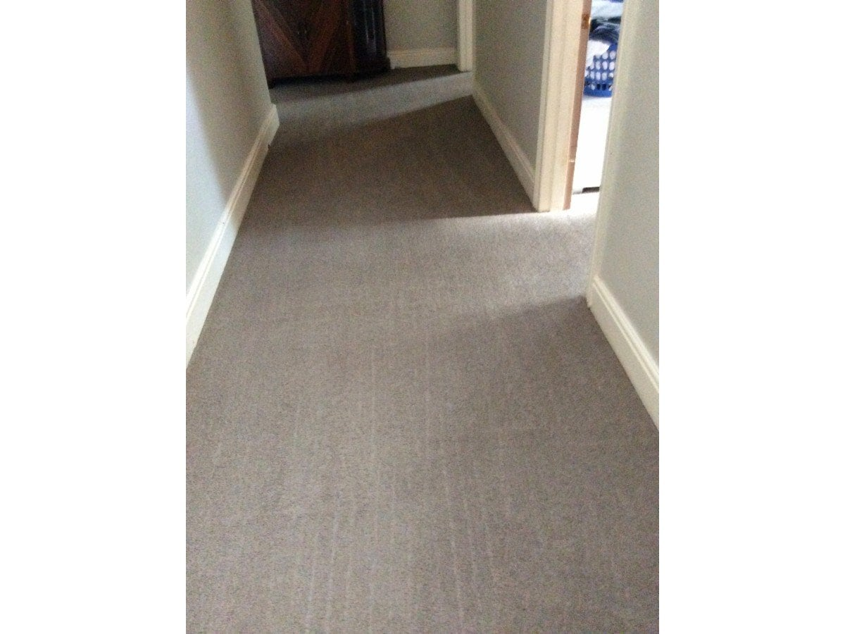 Central Coast Carpet Cleaning Carpet Cleaning