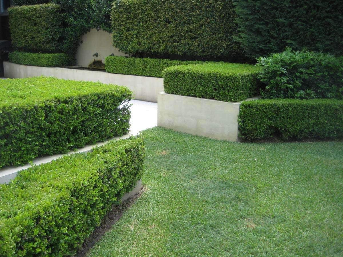 29 impressive landscape garden design canberra for Landscape design canberra