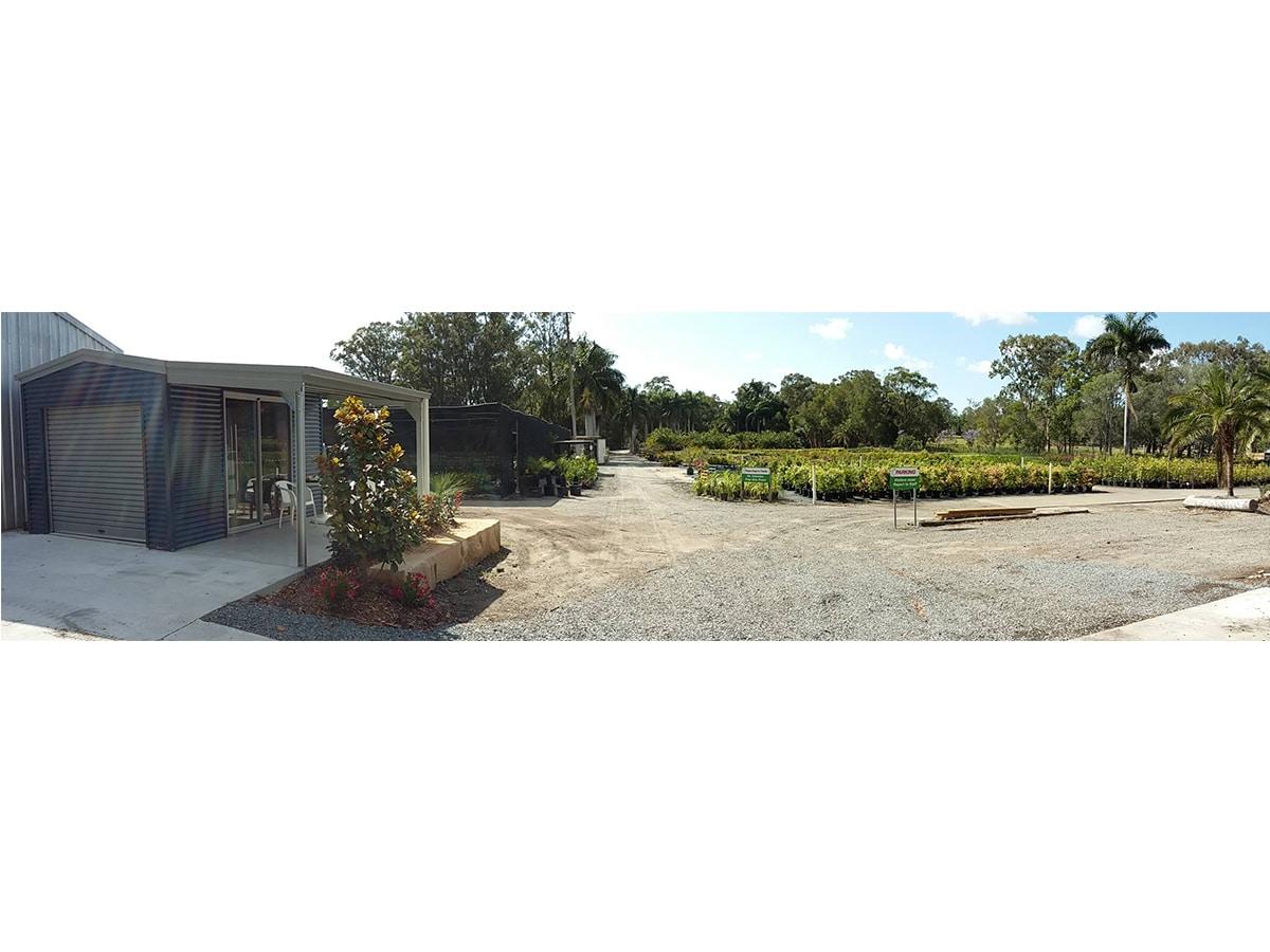 Natural Green Nursery - Garden Nurseries - 340 Pimpama