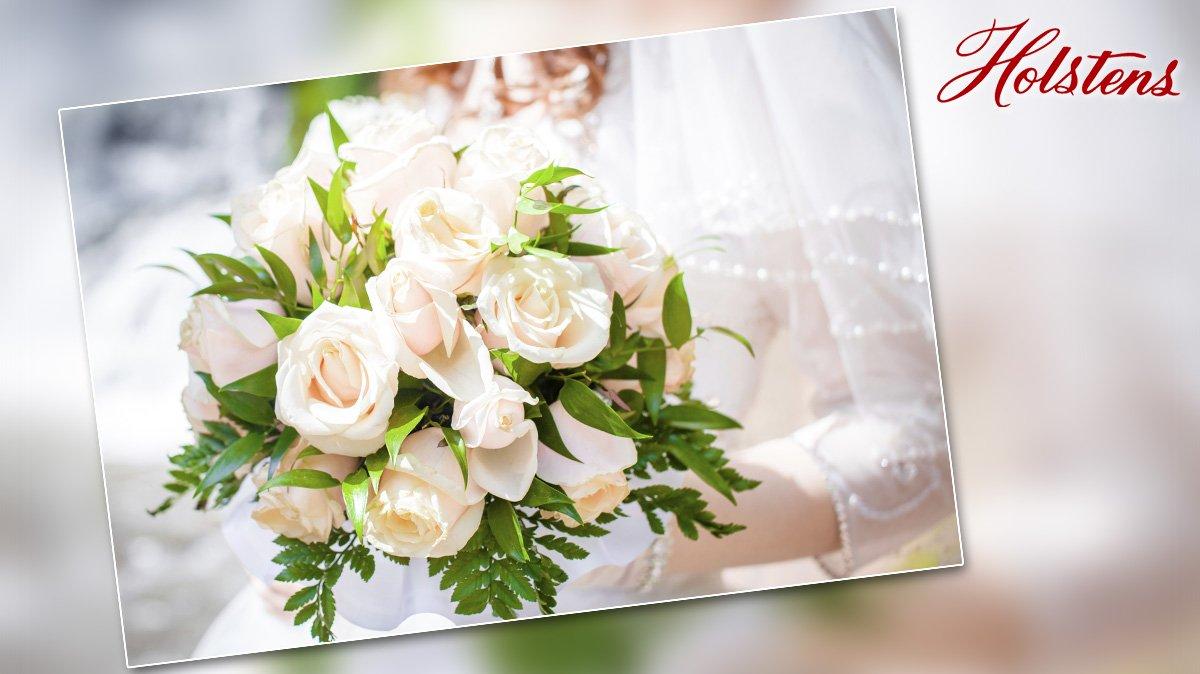 Holstens Pty Ltd Florist Supplies 6 River St Hindmarsh