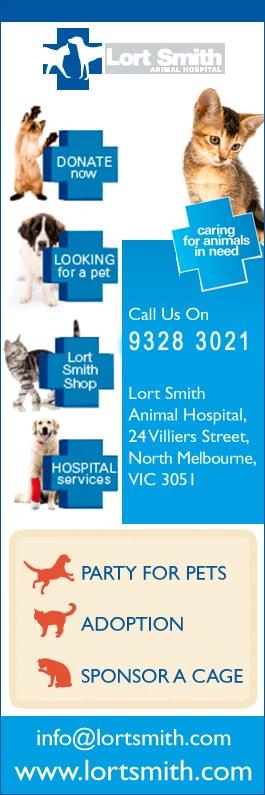 Lort Smith Animal Hospital Vet 24 Villiers St North Melbourne