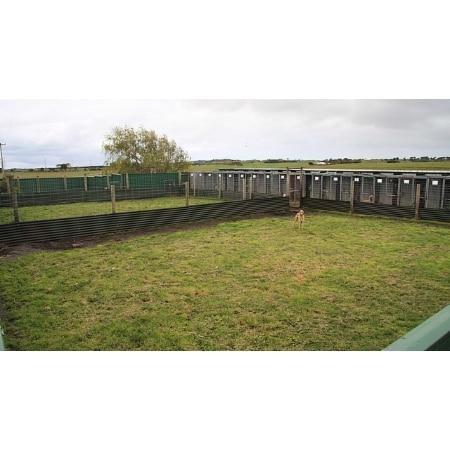 Dog Kennels Portland Victoria