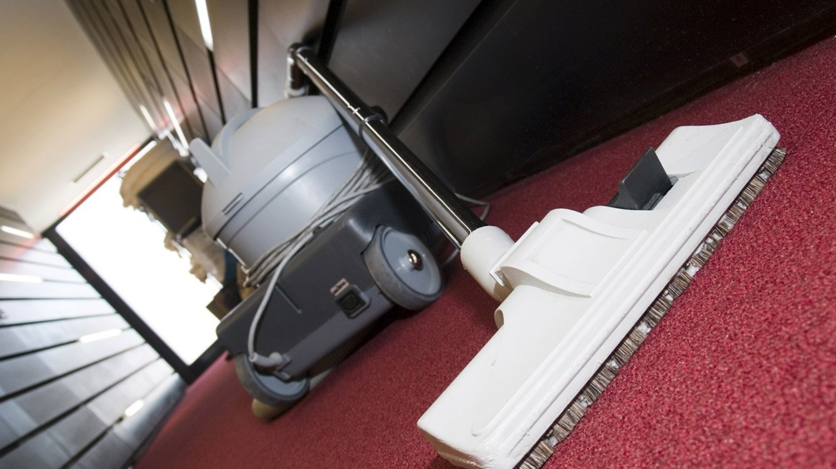 Professional Carpet Cleaners Cairns Vidalondon