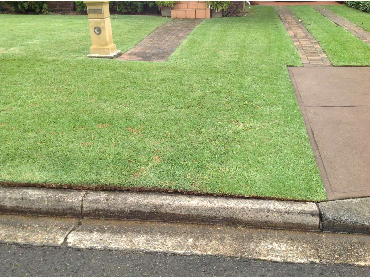 Bwr lawnmowing gardening lawn mowing services 10 for Lawn mowing and gardening services