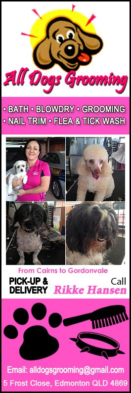 All dogs grooming dog cat clipping grooming 5 frost cl all dogs grooming promotion solutioingenieria Choice Image