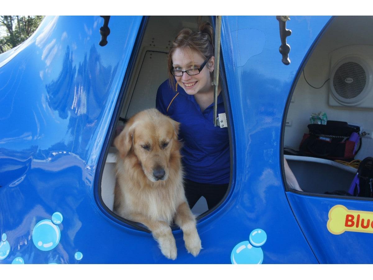 Dog Wash And Grooming Perth