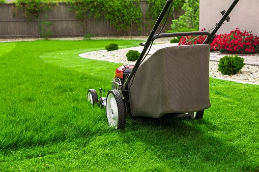 Image result for lawn mowing