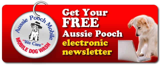 aussie pooch mobile Aussie pooch mobile dog wash australia, burpengary, queensland 13k likes wwwaussiepoochmobilecomau your local aussie pooch operator will wash.