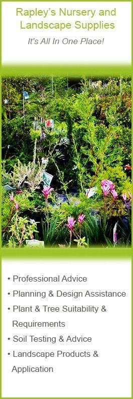 Rapleys Landscape Supplies Nursery Garden Nurseries 56