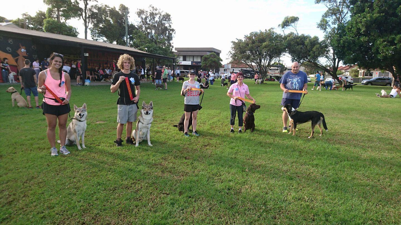 Dog Training The Illawarra