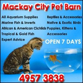 Mackay City Pet Barn Pet Warehouse Shops Stores 49 Juliet St South Mackay