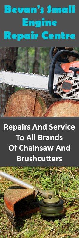Bevan's Small Engine & Lawn Mowers Repair Centre - Lawn