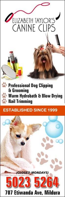 Mobile Dog Grooming Mildura