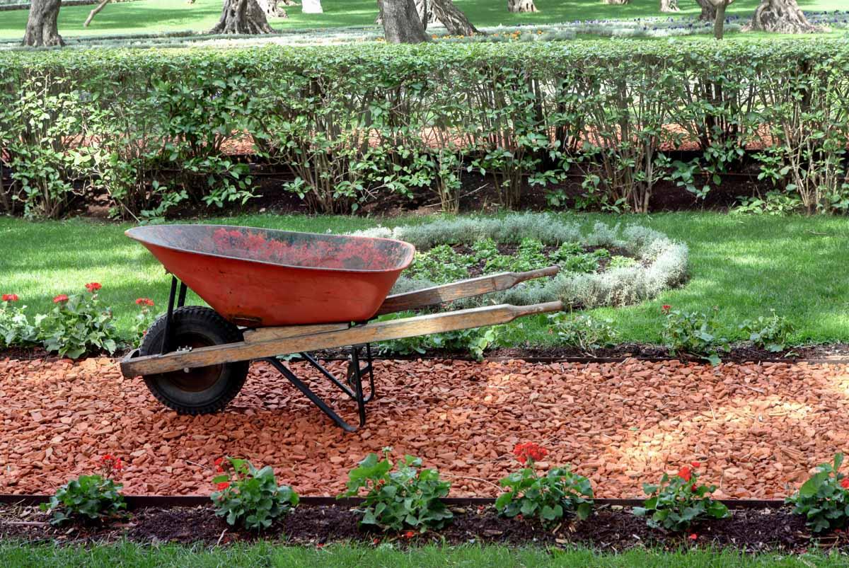 Exceed landscaping garden maintenance landscaping for Garden maintenance