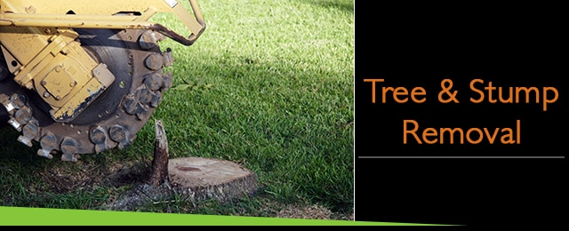 Van Hooff Tree Garden Care Gardeners GEELONG