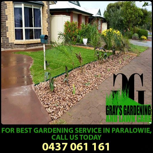 Grays gardening and lawn care gardeners paralowie grays gardening and lawn care promotion publicscrutiny Image collections