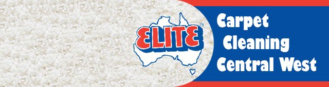 Visit website for Elite Carpet Cleaning Central West in a new window
