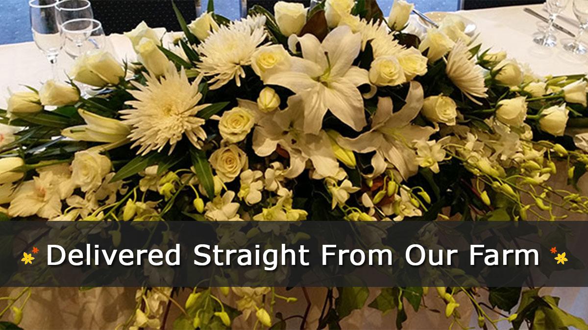 Zac Florist Liverpool Florists Campbelltown