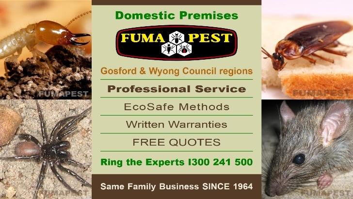 Fumapest Central Coast Nsw Termite Pest Control Pest Control