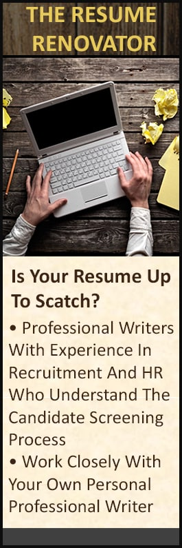 The Resume Renovator Resume Writing Services Suite 3 144
