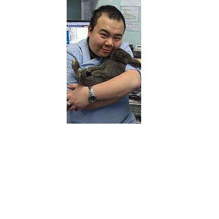 Bondi Junction Veterinary Hospital Veterinary Animal