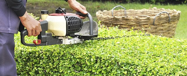 Toowoomba Lawnmowing And Garden Care - Lawn Mowing Services - 5 ...