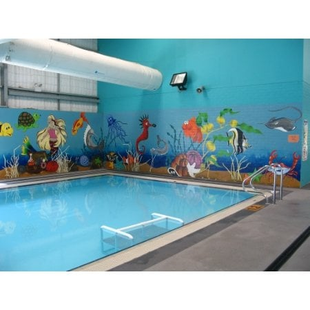 Mckeon Swim School Swimming Lessons Classes 1 Marley Pl Unanderra