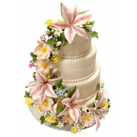 Baldocks cake decorators decorating classes 63 queen st adelaide one of our wmis robynn junglespirit Choice Image
