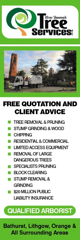 Oliver shoemark tree service pty ltd tree amp stump removal services