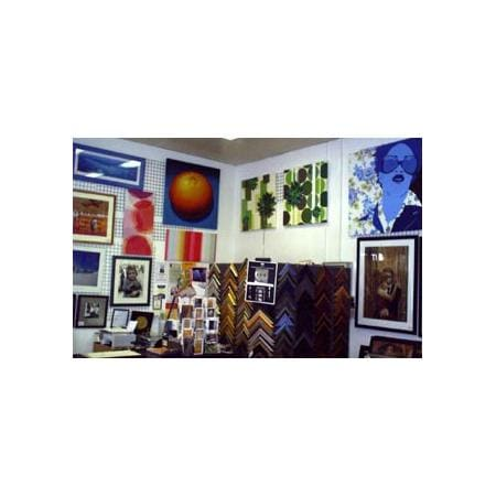 The Picture Gallery Photo Frames Picture Framing 41 Murray St