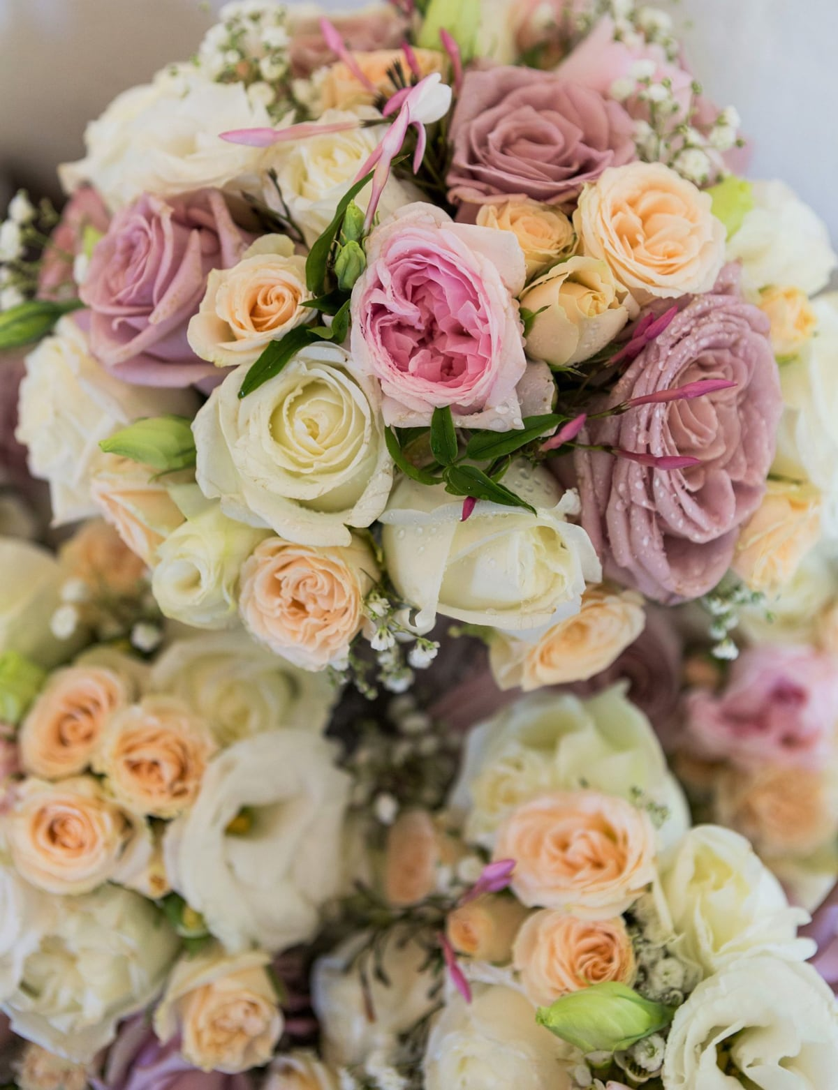 Flowers With Love Florists Queanbeyan