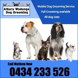 Albury wodonga dog grooming dog cat clipping grooming albury wodonga dog grooming promotion solutioingenieria Gallery