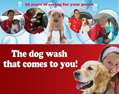 caso 6 aussie pooch mobile Answer to case 9 aussie pooch mobile christopher lovelock and  lorelle frazer after creating a mobile service that washes dogs outs.