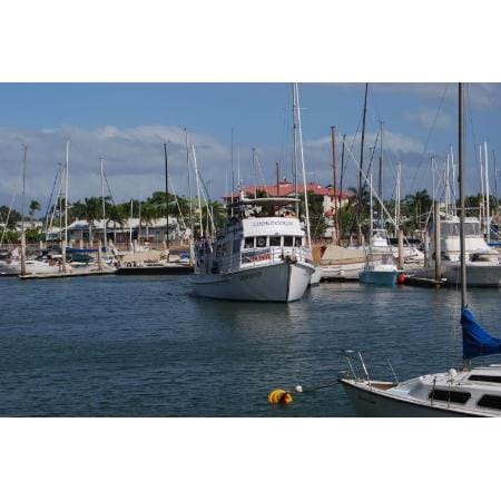 Cleveland Qld Boat Tours