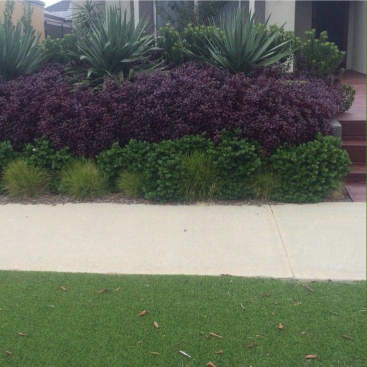 Forget jim gardening services lawn mowing services for Lawn mowing and gardening services