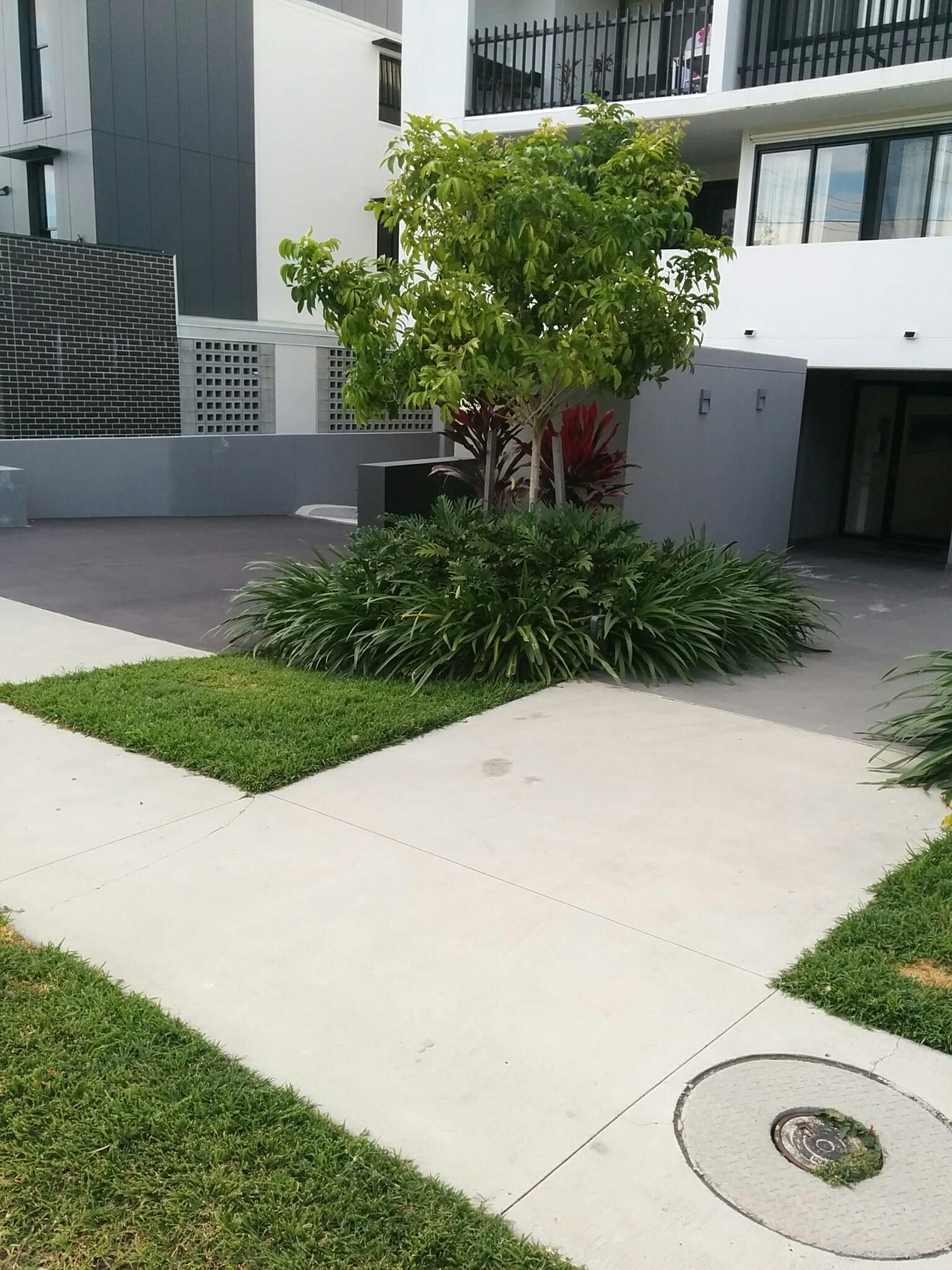 Mark baldock landscape architect landscape architects for Residential landscape design brisbane