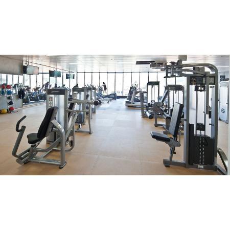 Fitzys gym squash centre health fitness centres for Gimnasio 9 entre 40 y 41