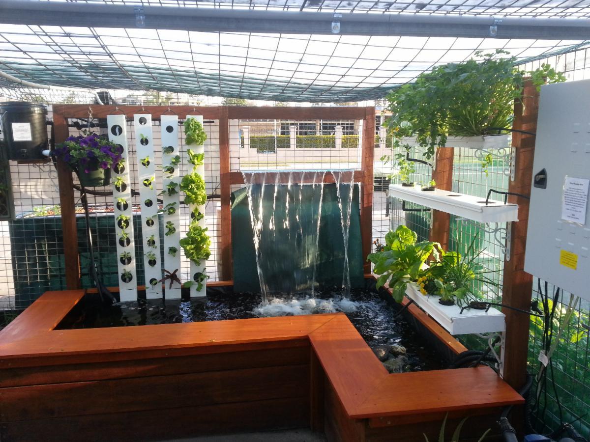 Aqua gardening hydroponics and aquaponics hydroponics for Hydroponics aquaponics