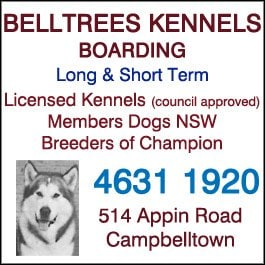 Dog Grooming Campbelltown Nsw