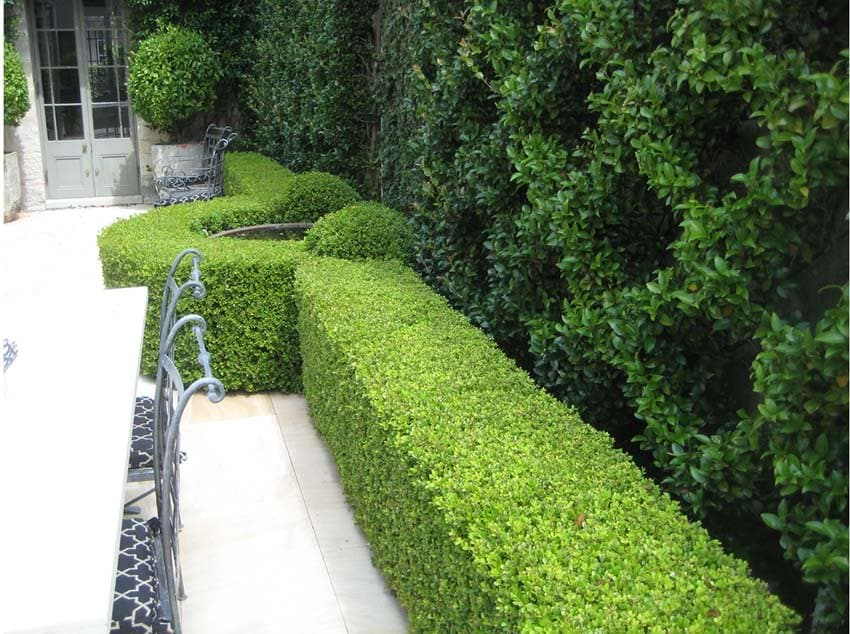 Angus finlayson formal gardens landscaping landscape for Formally designed lawn