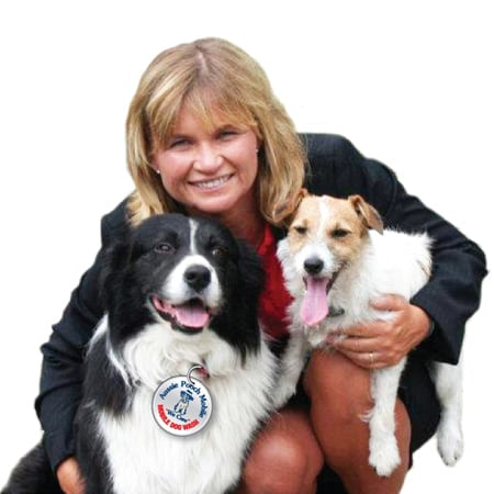 In Home Dog Grooming Penrith