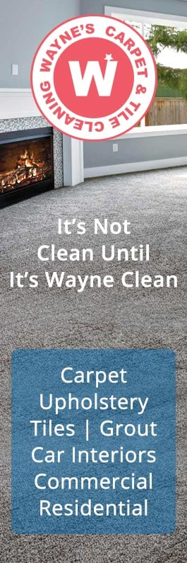 Wayne S Carpet Cleaning Service Carpet Cleaning