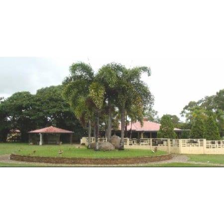 Ian phillips crematorium pacific gardens cremation for Pacific gardens